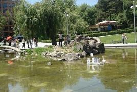 Yerevan's Swan Lake to residence swans soon