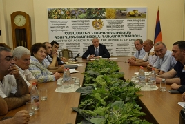 Dairy product production problems discussed in Armenia